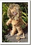 2009 - OOAK DOLLS - LENNY - OZ SERIES - COWERDLY LION
